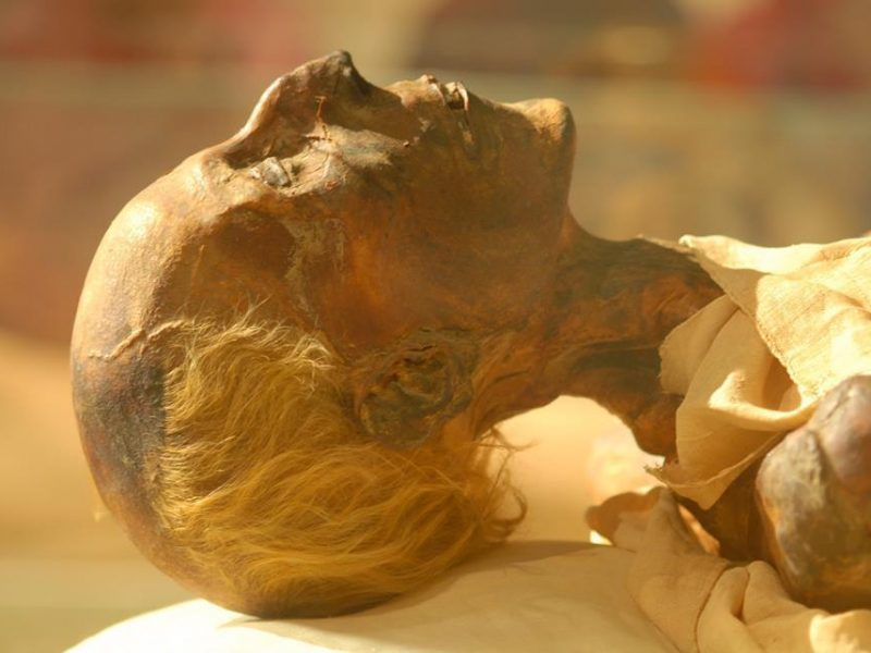 The Egyptian Mummies , Luxor Full Day Tour Mummification & Luxor Museum with Karnak Temple-