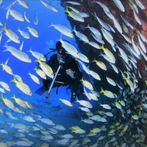 best scuba diving image sharm elsheikh
