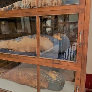 mummies at the Egyptian musuem