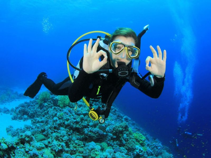 Sharm El Sheikh Excursions Tours, Desert Safari, Activities! , Cairo, Luxor and Hurghada Package