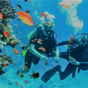 sharm elsheikh diving spots