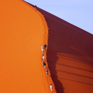 desert slider photos (5)