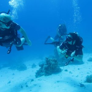 egypt tour luor and Hurghada and diving