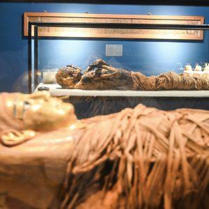 mummies museum cairo