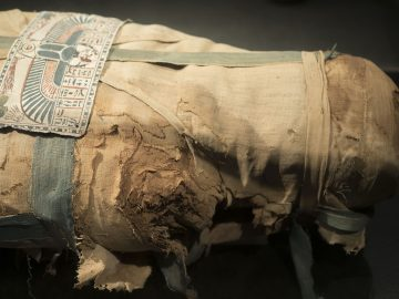 Luxor Full Day Tour Mummification & Luxor Museum with Karnak Temple