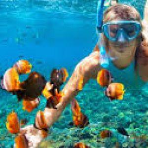Hurghada Dolphin House
