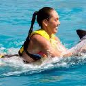Hurghada Dolphin House and Banana Boat & Snorke