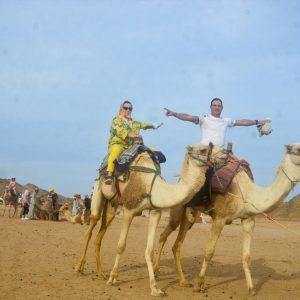 best camel ride desert sfari