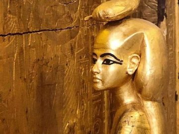 Best Cairo Day Tour Pyramids, The Museum & The Citadel, Egypt Tours -Experience Cairo, Nile Cruise and Abu Simbel tour – 10- Days with private Egyptologist. This one of the best cultural tour in Egypt blends the major highlights of Egypt & one of the best tours for the first-time visitor to Egypt.