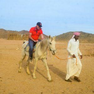 best horse riding egypt