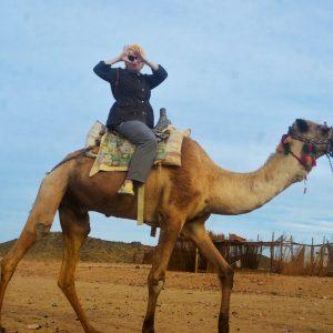 best of egypt safari adventures