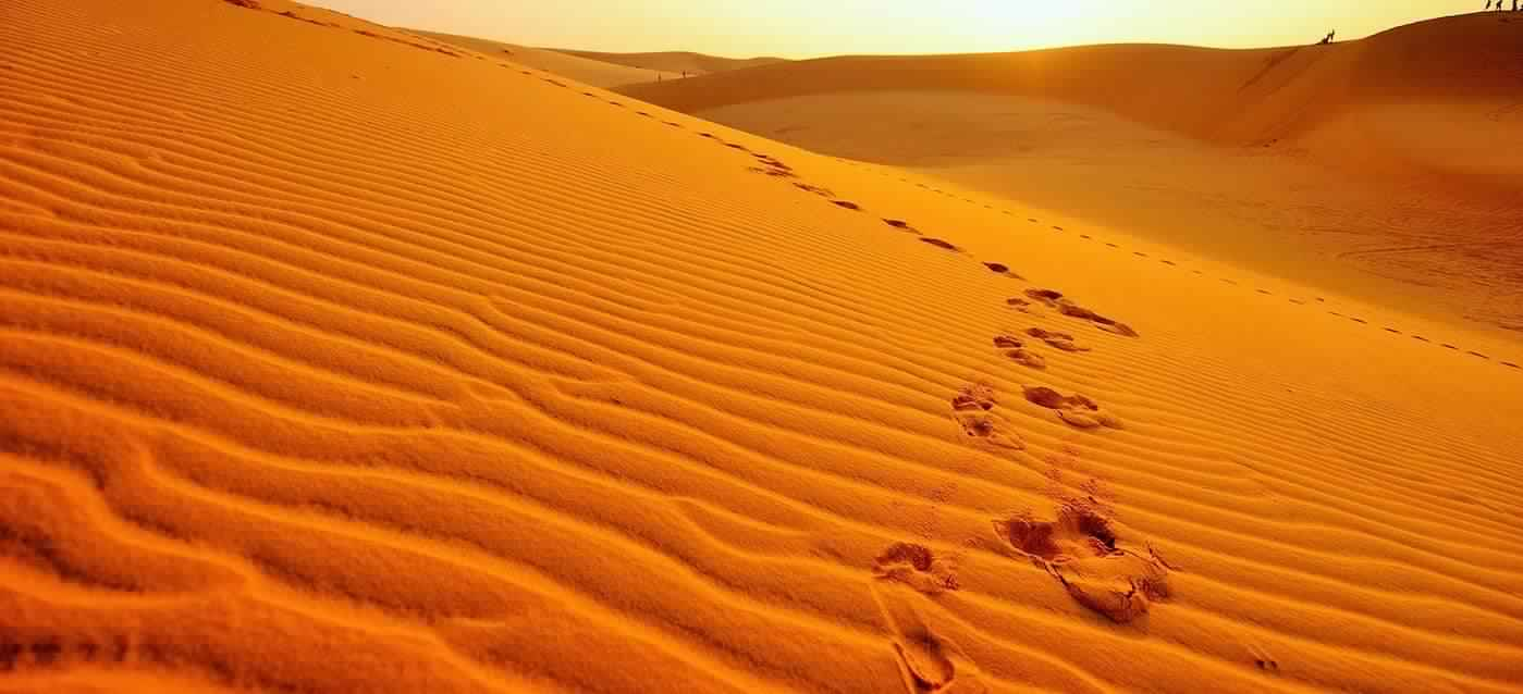 Facts about the Great Sand Sea in Egypt.