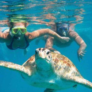 marsa alam diving