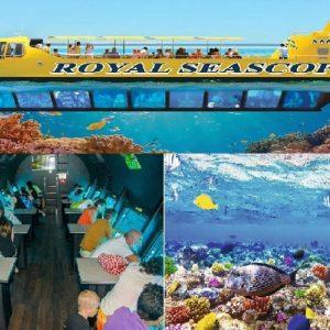 Hurghada Submarine Tour -Discover the Marine Life of the Red Sea