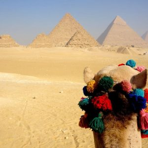 Your First Choice for Egypt Tours & Holidays!