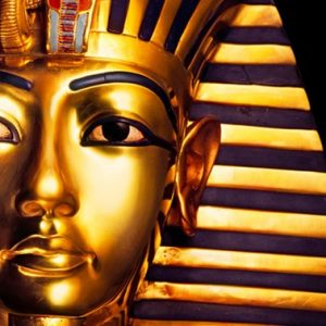 the largest collection of Tutankhamen