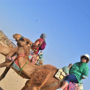 Camel safari in Hurghada