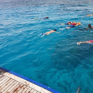 best scuba diving hurghada