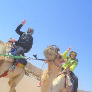 camel safri in hurghada egypt